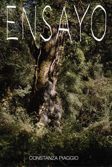 http://www.constanzapiaggio.com/web/new/files/gimgs/18_poster-ensayo.jpg
